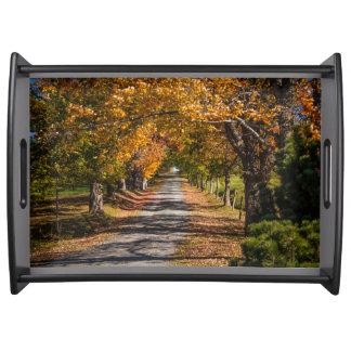 Colores del otoño en una carretera nacional bandeja