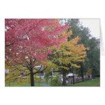 Colores del otoño felicitación