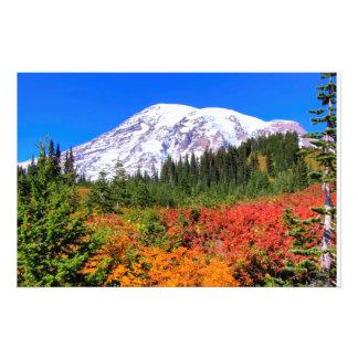 Colores del otoño arte con fotos