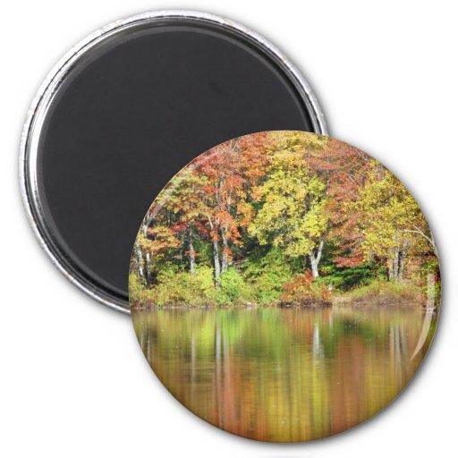 Colores del otoño imán para frigorifico
