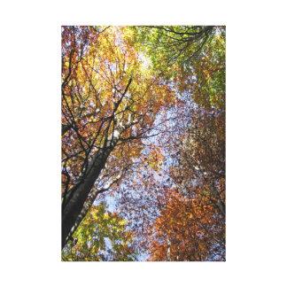 Colores del otoño impresión en lienzo estirada