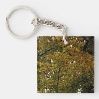Colores del otoño llavero cuadrado acrílico a una cara