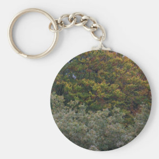 Colores del otoño llavero redondo tipo pin