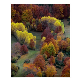 Colores del otoño poster