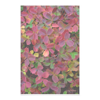 colores del otoño papelería