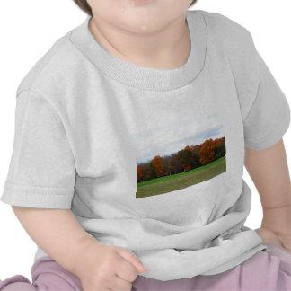 Colores del otoño camisetas