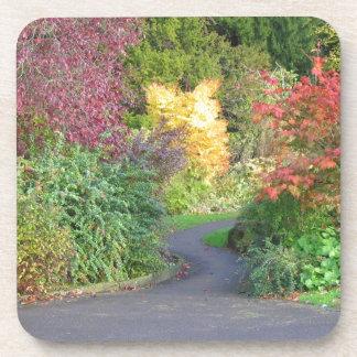 Colores del otoño posavasos de bebida