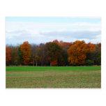 Colores del otoño postal