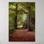 Colores del otoño posters