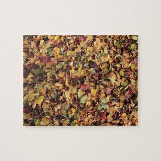 colores del otoño puzzle con fotos
