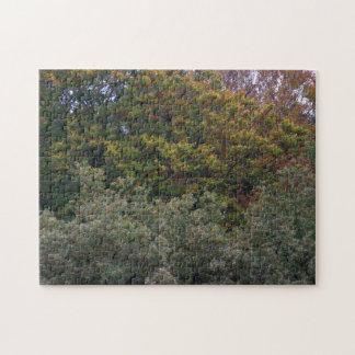 Colores del otoño puzzle