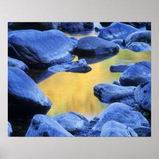Colores del otoño reflejados en una piscina que va poster