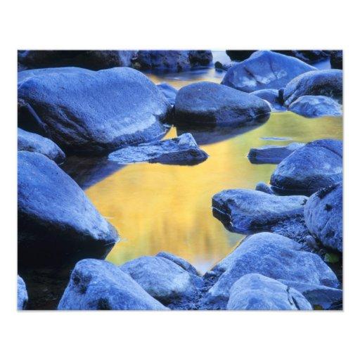 Colores del otoño reflejados en una piscina que va cojinete