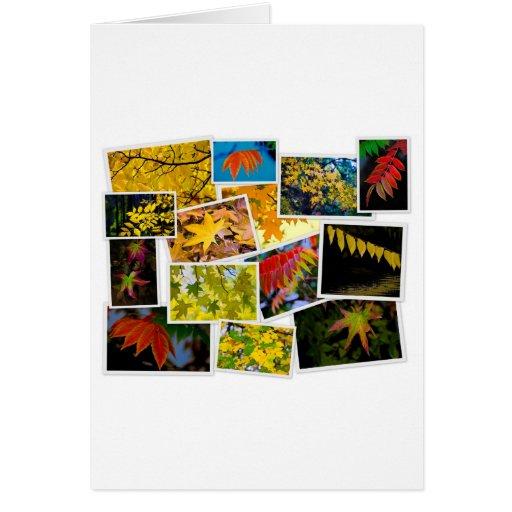 colores del otoño tarjeton