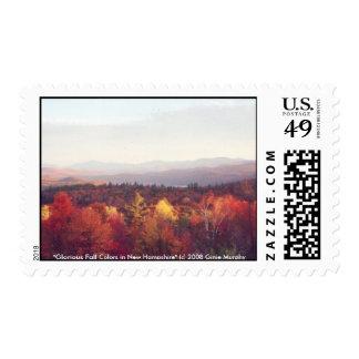 """""""Colores gloriosos de la caída en New Hampshire """" Franqueo"""