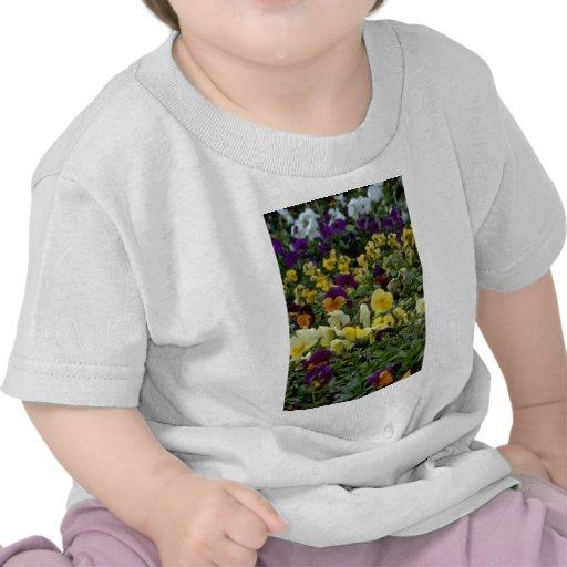 Colores muy pequeños camisetas
