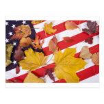 Colores patrióticos del otoño postales