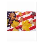 Colores patrióticos del otoño tarjeta postal