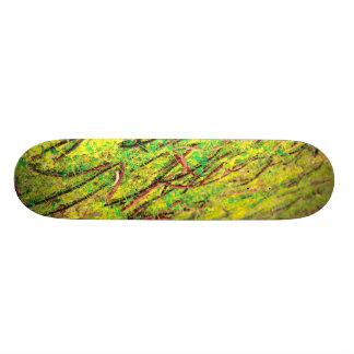 Colores vivos naturales patines