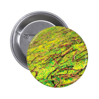 Colores vivos naturales pin