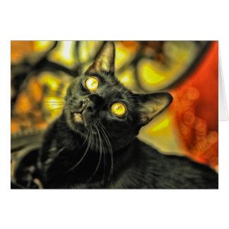 Colores y gatito tarjeta de felicitación