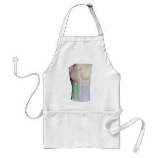 Colorful Abs Adult Apron