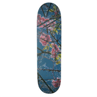 Colorful Abstract Art Print Skateboard Deck