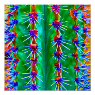 Colorful Abstract Cactus Pop Modern Southwest Poster