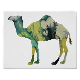 Colorful abstract  Dromedary silhouette Poster