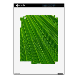 Colorful abstract green palm leaf skins for iPad 2