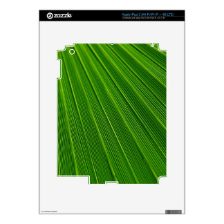 Colorful abstract green palm leaf skins for iPad 3