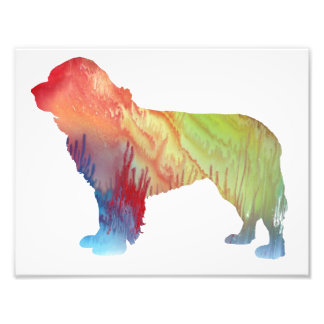 Colorful abstract newfoundland silhouette photo print