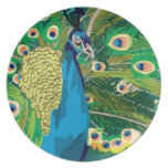 Colorful Abstract Peacock Dinner Plates
