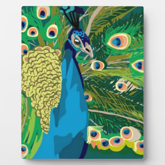 Colorful Abstract Peacock Display Plaques