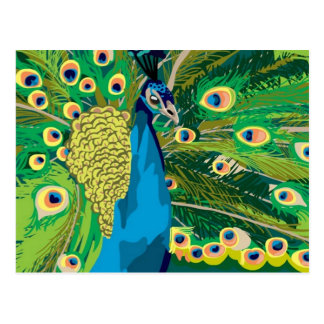Colorful Abstract Peacock Postcard