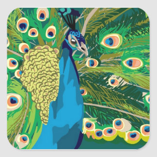 Colorful Abstract Peacock Square Sticker