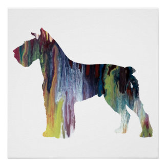 Colorful abstract Schnauzer silhouette Poster