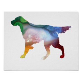 Colorful abstract Setter silhouette Poster