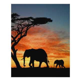 Colorful African Safari Sunset Elephant Silhouette Poster