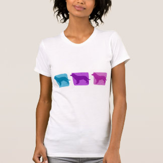 Colorful American Water Spaniel Silhouettes Ladies Tees