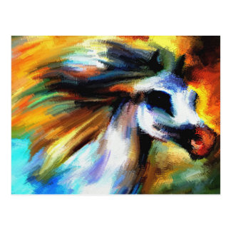 Colorful Arabian Horse Postcard