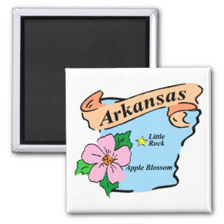 Colorful Arkansas Map Gifts and Tees Magnet