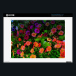 "Colorful Artistic Pansies Acer Chromebook Decal<br><div class=""desc"">Looking like an oil painting,  this colorful photo of pansies is cheering and happy. Orange,  yellow,  pink,  blue pansies galore.</div>"