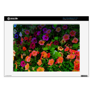 Colorful Artistic Pansies Acer Chromebook Decal