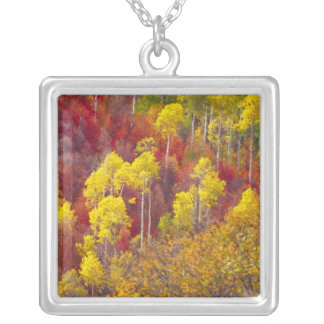 Colorful aspens in Logan Canyon Utah in the 2 Necklace