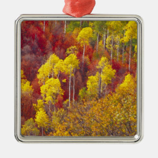 Colorful aspens in Logan Canyon Utah in the 2 Christmas Ornaments