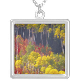 Colorful aspens in Logan Canyon Utah in the Personalized Necklace