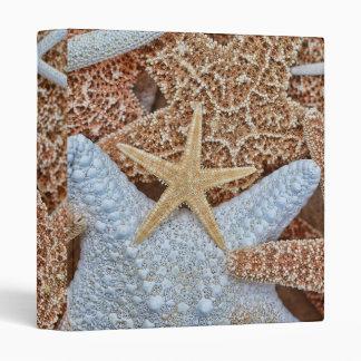 Colorful Assortment of Starfish Photo Album 3 Ring Binder