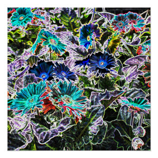 Colorful Asters Flowers Outlines Abstract Art Poster