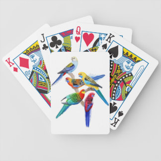 Colorful Australian Rosella Parrots Playing Cards